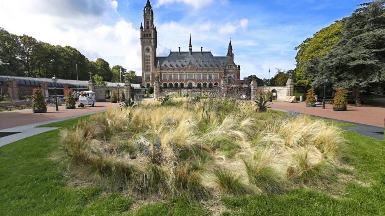 4 bijzondere plekjes in Den Haag